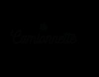 la_camionette_concept