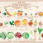 fruit-legume-decembre-saison