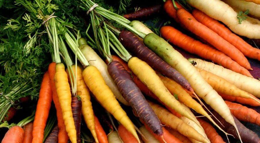 recette-carotte-rapee-la-camionnette