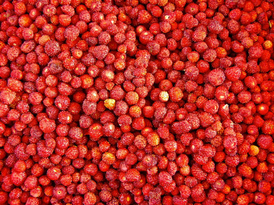 recette-fraises-la-camionnette-epicerie-montpellier