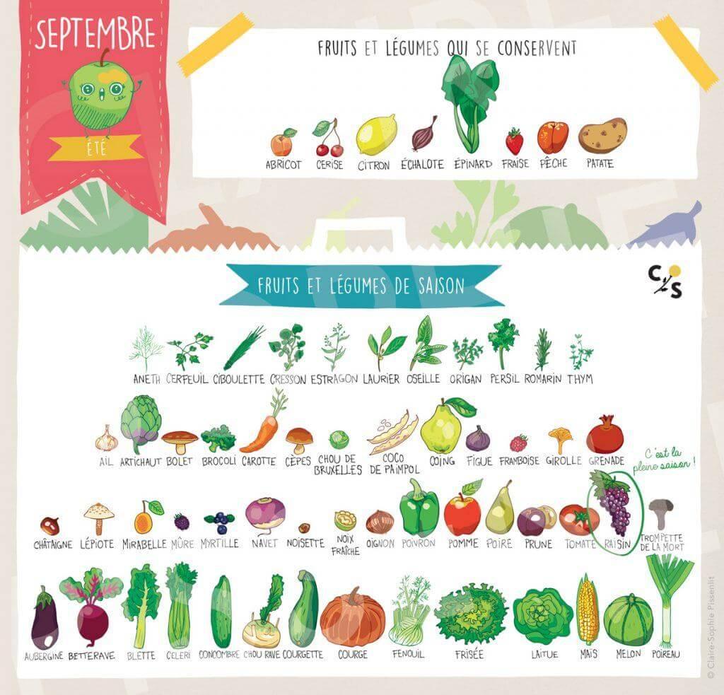 legume-de-saison-septembre