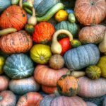 courge-potiron-automne-recette